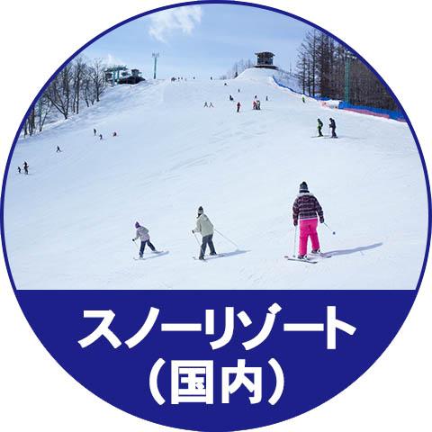 日本のスキー場、スノーリゾート