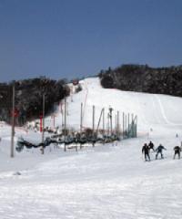士別市あさひスキー場