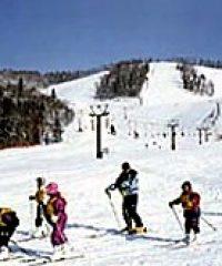 標津町営金山スキー場
