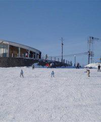 風の丘公園スキー場